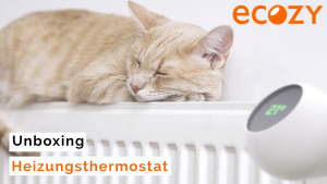 eCozy Thermostat - Unboxing